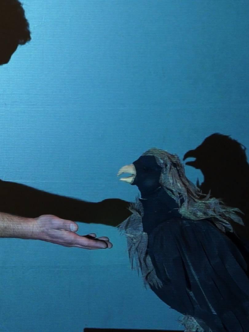De l'ombre à la lumière Johanny Bert 4 - Blandine Armand - Documentaires