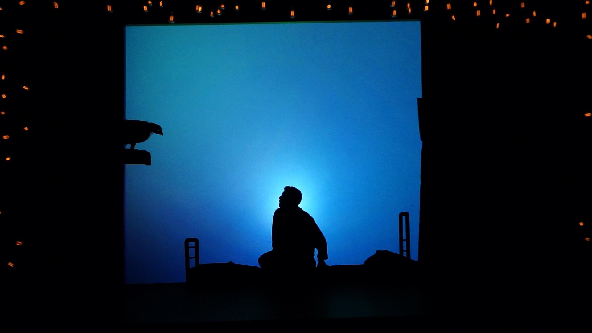 De l'ombre à la lumière Johanny Bert 5 - Blandine Armand - Documentaires