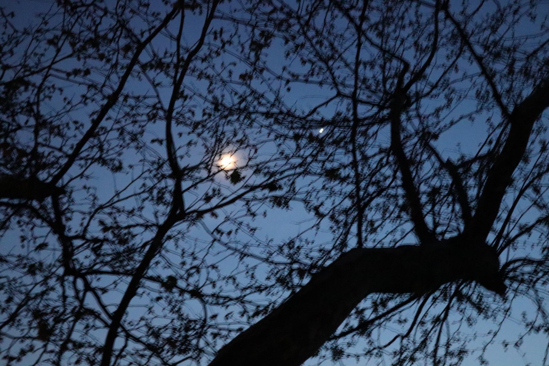 BLEU 9 (Ciel du soir) - Blandine Armand - série photos