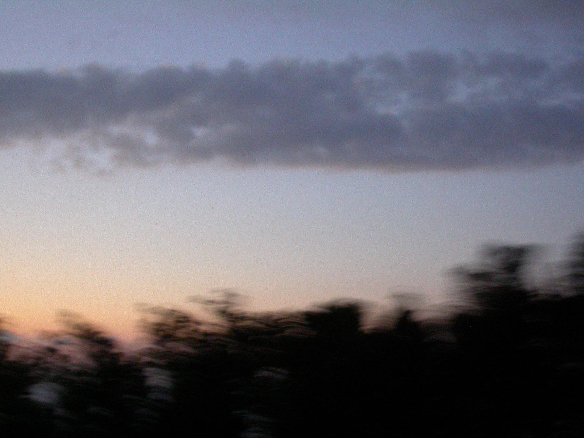 Entre Ciel et Terre _ 12- Arbres - Blandine Armand - série photos