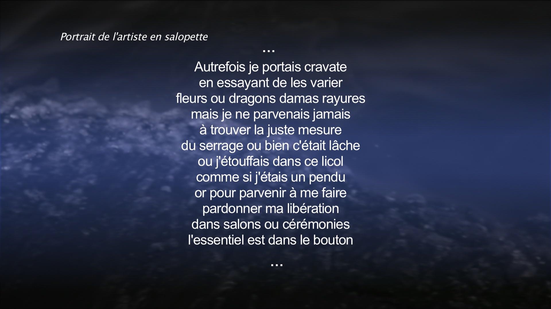 Portrait de l'artiste en salopette - Blandine Armand - Créations vidéos